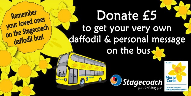 stagecoach_daffodil_article