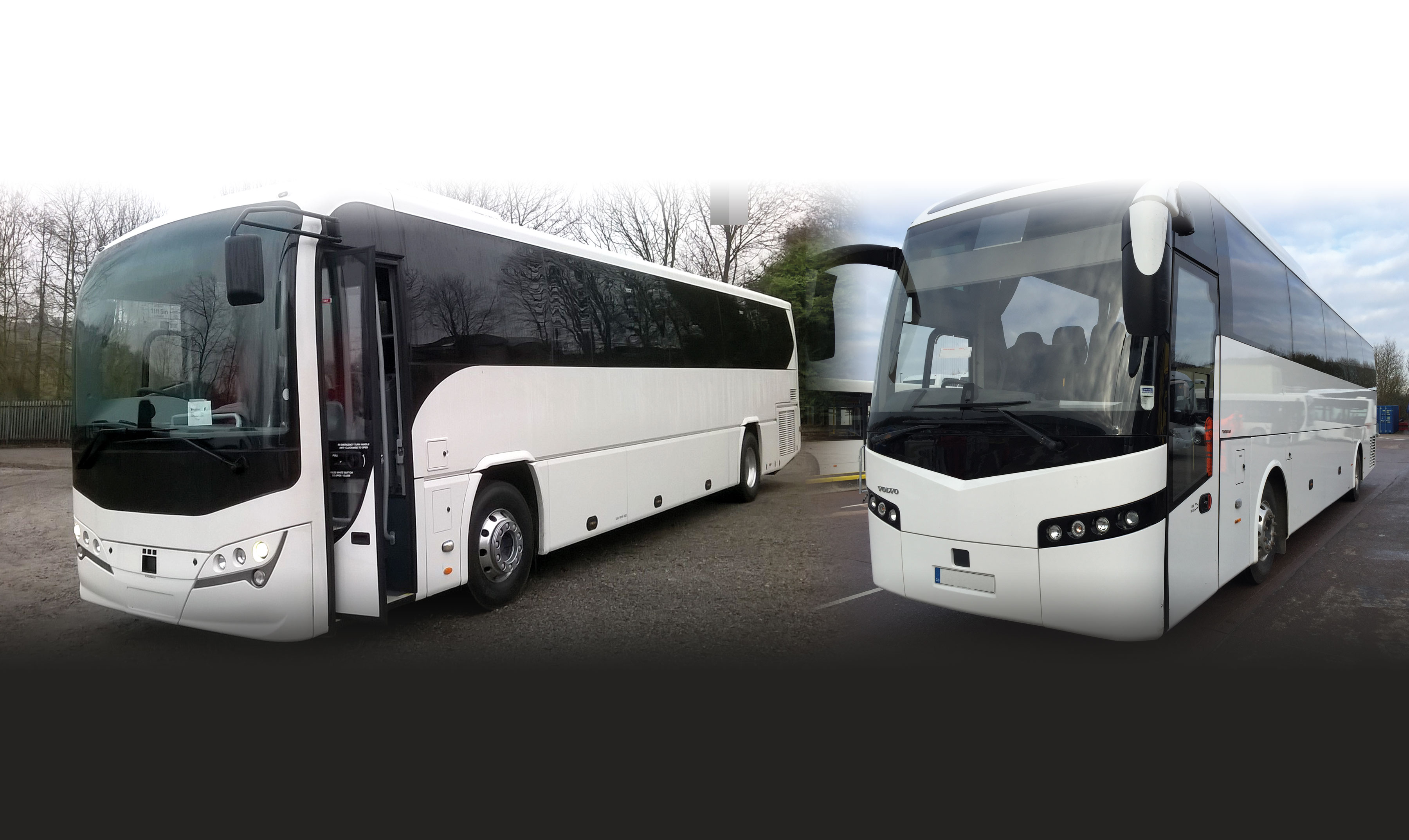cute great quality official shop Mistral Bus and Coach | First for bus and coach rentals
